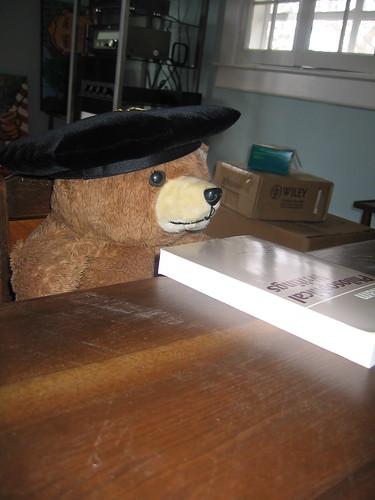 Professor Pudge Bear now has a desk