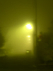 brouillard in the city lights