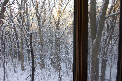 WINTER WINDOW 1