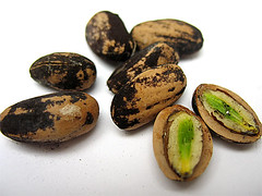 Pine Nuts (Part 2)