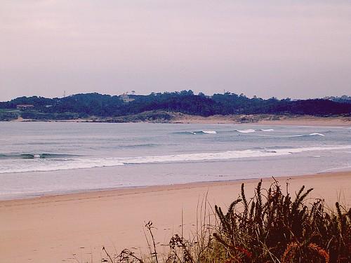 93182602 21791df311 Las olas de hoy Lunes, 30 de Enero de 2006  Marketing Digital Surfing Agencia