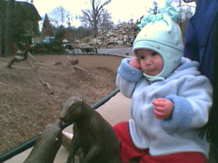 Celeste with Prairie Dogs
