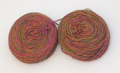 Sockapalooza yarn