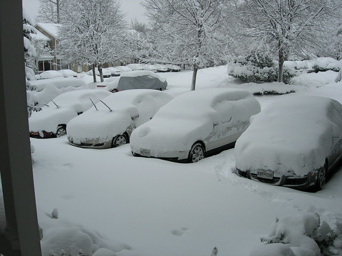 We have a freaking huge amount of snow (for our area of the globe)
