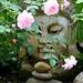 buddha & roses