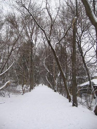 The Kay Gardner Toronto Beltline Park