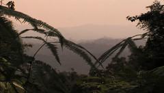 BTNP, Sumatra