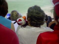Real Swannies Fan