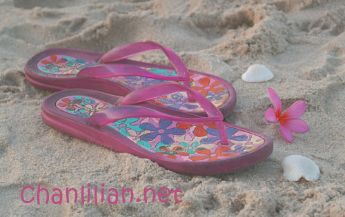 beach_slipper