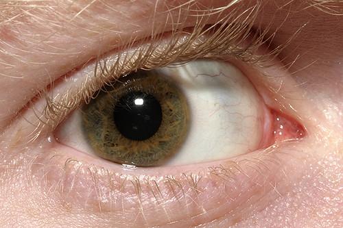 Dave's Macro Eye