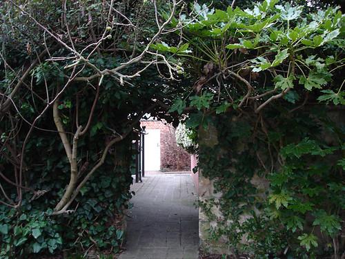 garden sneak peek