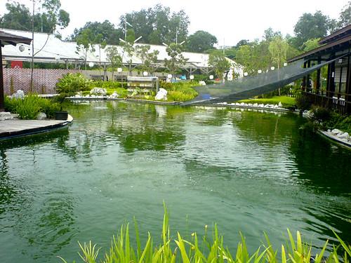 Sentul West Koi Pond