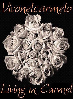 roses carmelo