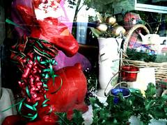 Salvo's Christmas Window Display