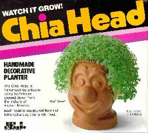Chia head tribute for my blog