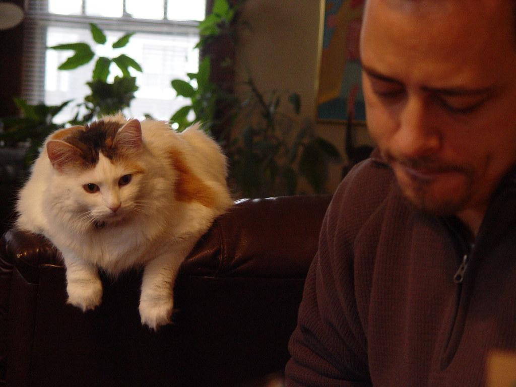 cooncat & carl
