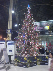 Christmas Metro sponsored Christmas Tree 2005 at Edinburgh Waverley Station
