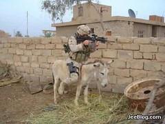 Cav Iraq