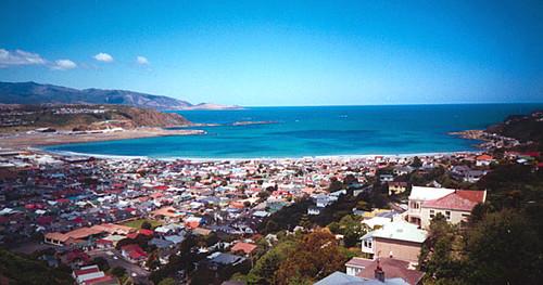 Wellington_Lyall%20Bay