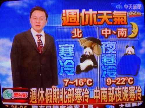 貓熊氣象?