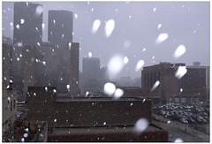 Snow Globs