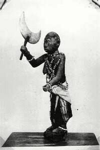 lisa-mawu