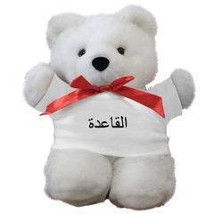 aq-teddybear