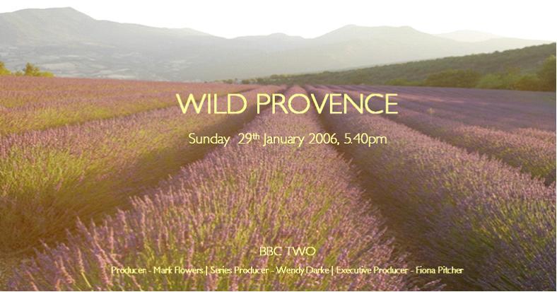 wild provence