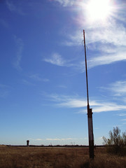 Pole and tower