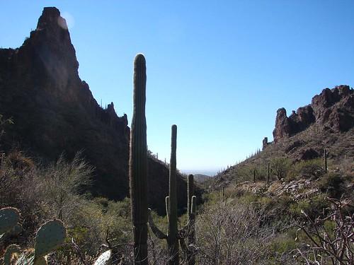 Feb 06 Tucson 064