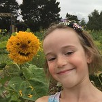 Sunflower selfie<br/>20 Aug 2017