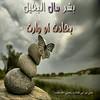 36149883324_1b7e3a6639_t