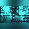 37027613485_11ecc6df89_t