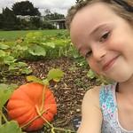 Pumpkin selfie<br/>20 Aug 2017