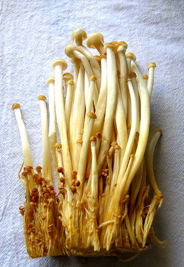 brown enoki mushrooms