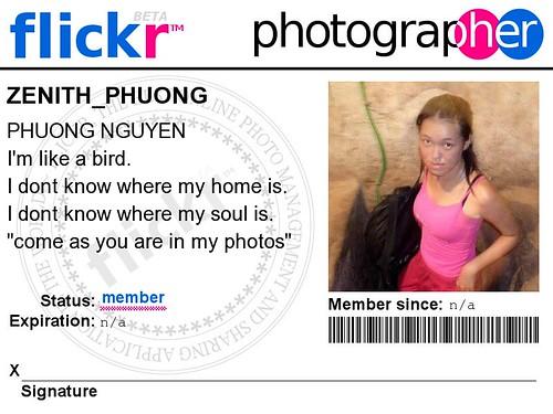 my flickr badge