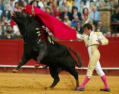 Bullfighting di Spain