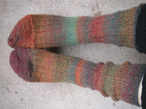 fortissima colori socks
