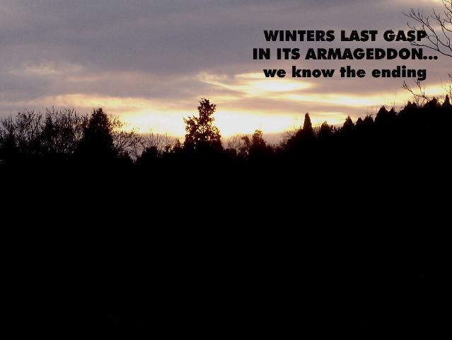 winterslastgasp_00