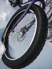 bike_pugs_frtwheel