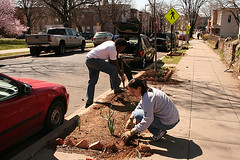 Spring pre-cleaning, Trinidad-Ivy City COmmunity Garden Club