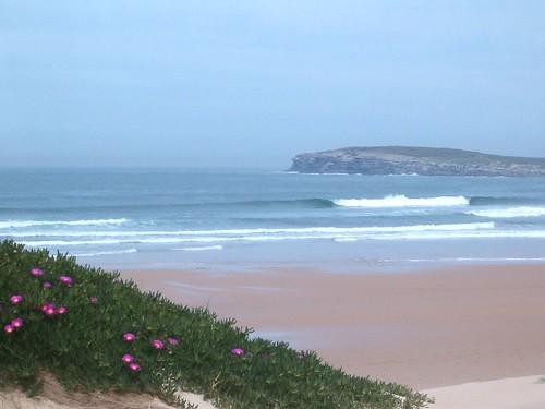 120868495 34eb3f4c1e Las olas de hoy Viernes, 31 de Marzo de 2006  Marketing Digital Surfing Agencia