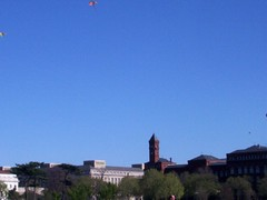 kites over the smithsonian
