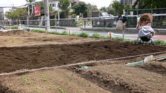 土作り:堆肥編