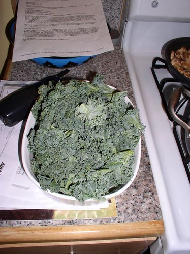 Feshly rinsed Kale
