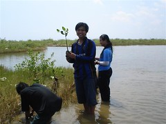 student with mangrove