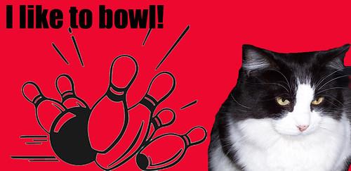 Smidge likes to bowl