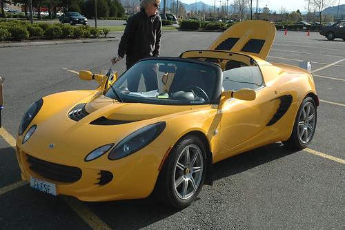 Tulip Rallye 11