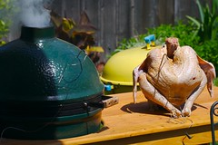 Turkey Waiting for the BGE