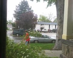 Mowing Boy 2
